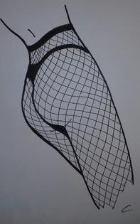 dessin fesses résille