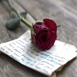 Tus poemas / testimonios eróticos.
